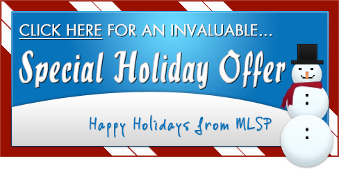 MLSP Holiday Gift