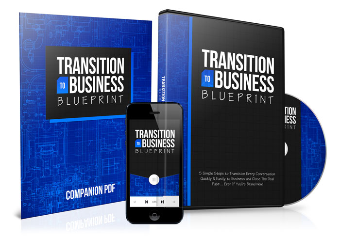 TRANSITION TO BUSINESS BLUEPRINT